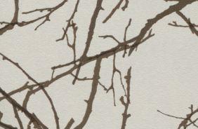№ 45 Лесные ветви (мт, гл)