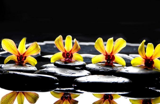 Вариант фотопечати: Орхидея желтая