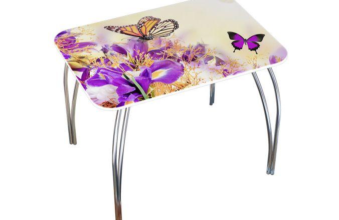 Стол фотопечать бабочки