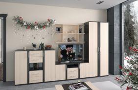 Набор мебели для гостиной 22. Композиция 1